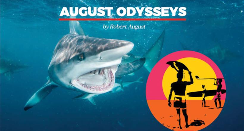 """August Odysseys – """"Shark"""" Endless Summer"""