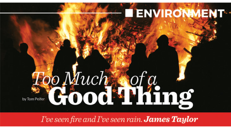 Environment: Too Much of a Good Thing