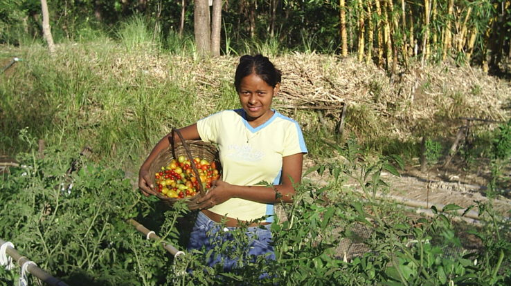Gardening for the Future of Guanacaste