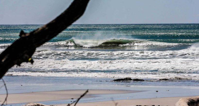 Waves You've Missed – June