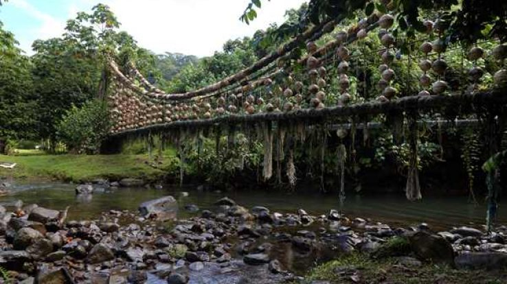 Featured Adventure – Cocos Island, Costa Rica's Treasure