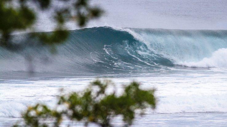 Waves You've Missed – November