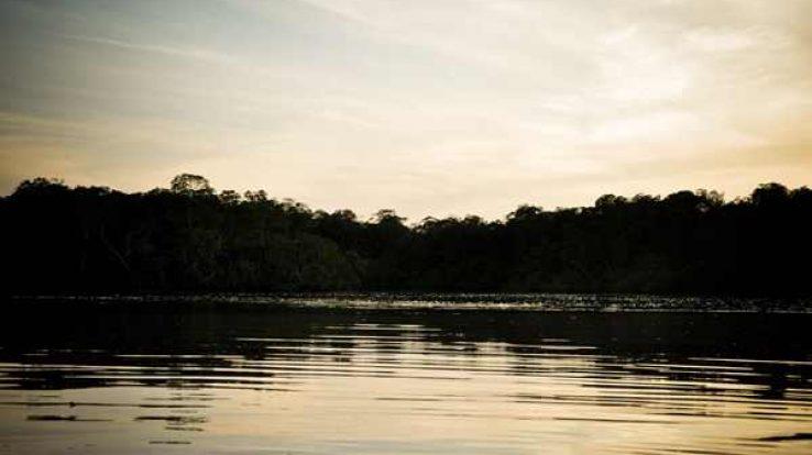 Quick Trip – Tamarindo Estuary