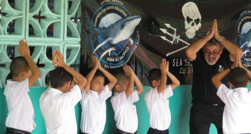 Sea Shepherd – Ambient Ambassadors, Goodwill Campaign for the Pacific