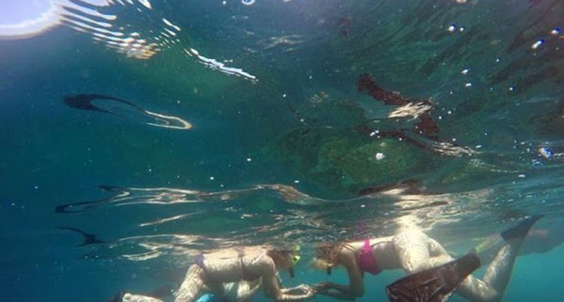 Quick Trips – Snorkeling Off the Shore