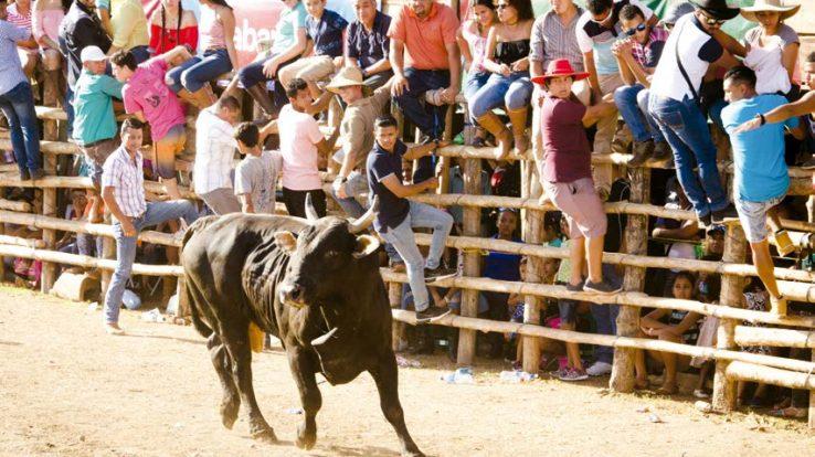 Dos Locos TTZ – Fiesta Time!!