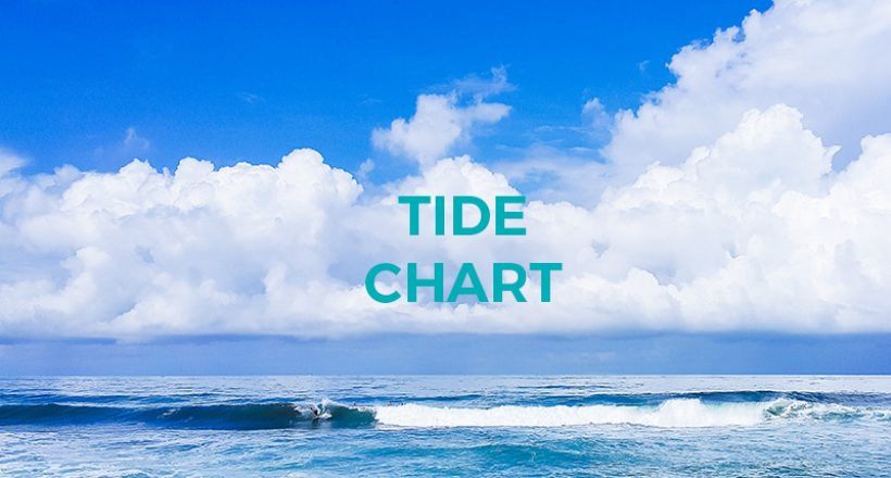 Costa Rica Tide Chart March 2019 The Howler Magazine