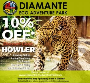 Diamante-discount-code-promo-code-Howler-Display-sq-.jpg