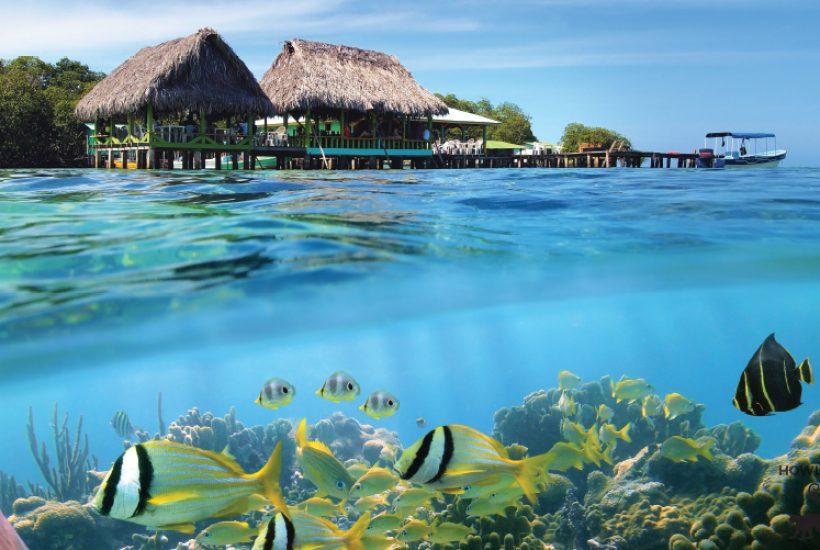 Navigating Bocas del Toro, Panama - The Howler Magazine